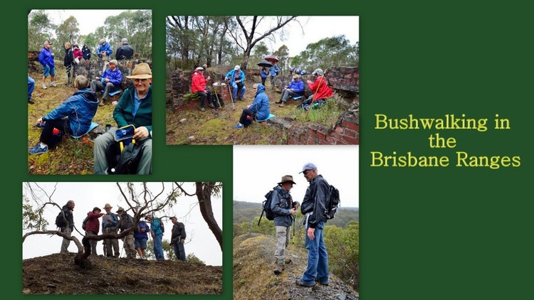 bushwalking_brisbane_ranges