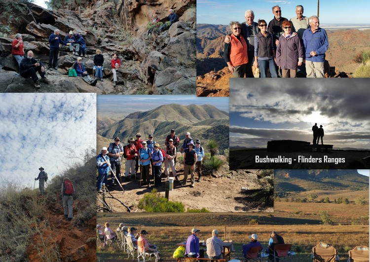 bushwalking_flinders_ranges